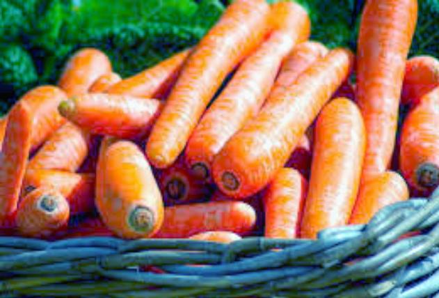 Как вырастить хорошую морковь