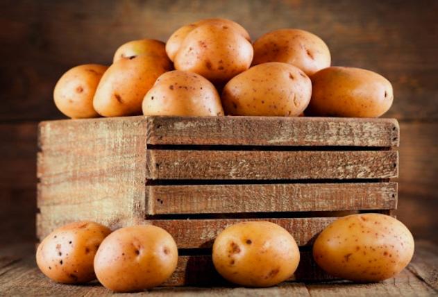 Правила хранения картофеля